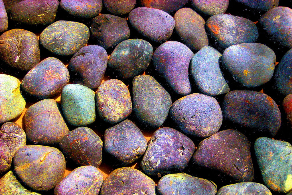 Autumn pages to color - Colored Pebbles